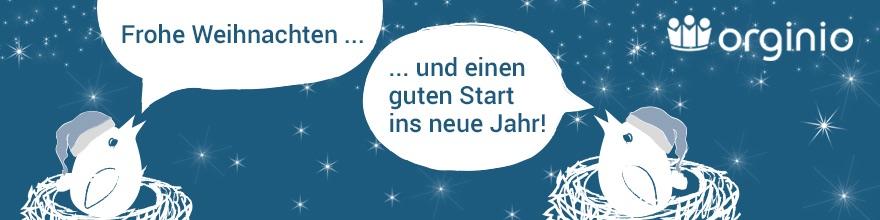 Frohe Weihnachten vom orginio-Team